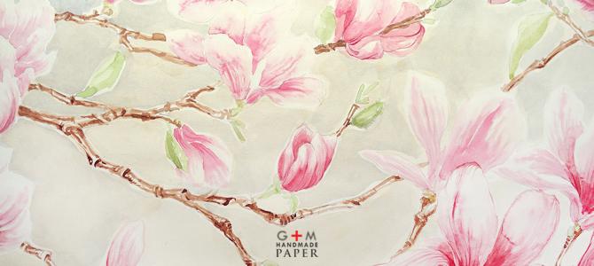 Magnolii pictate in acuarela