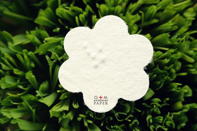 Hartie cu seminte forma de floare