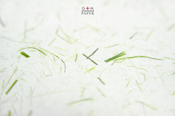 Hartie manuala cu iarba verde