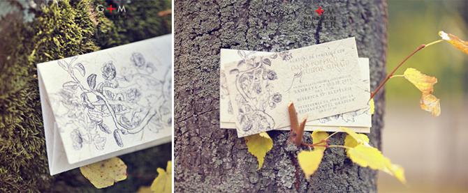 Invitatii de nunta pentru nunta in foisor, invitatii cu desene la comanda