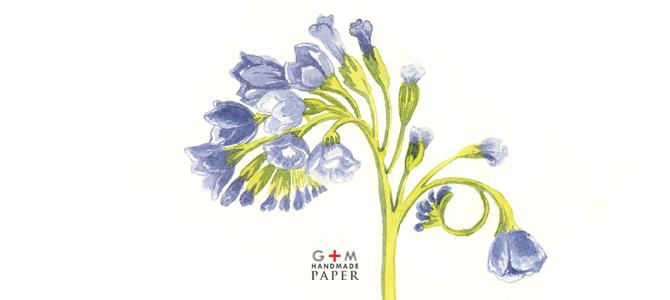 Flori albastre pictate